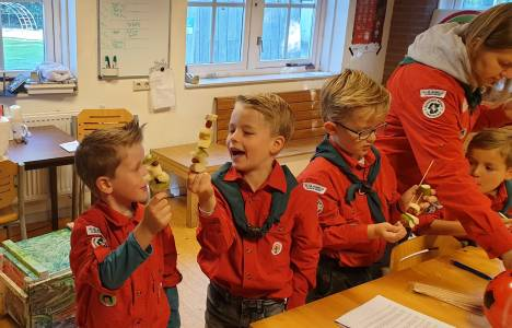 almelo-scouting-hjbllanos-bingo