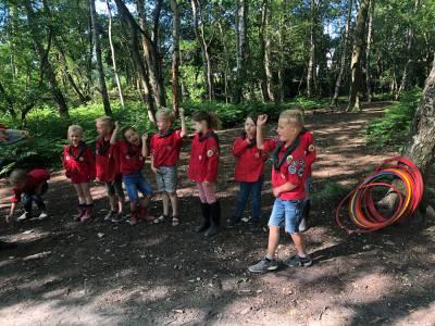 Hiken-bevers-bos-hjbllanos-scouting-almelo