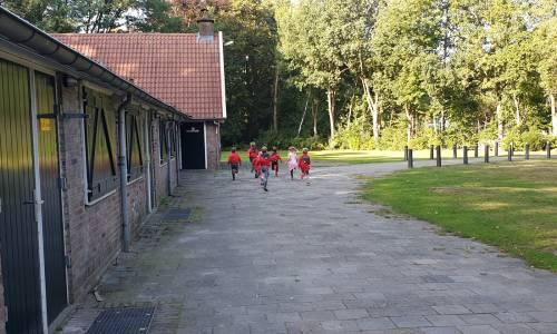 scouting-almelo-hjbllanos-bevers