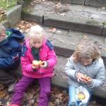 Welpen – Sinaasappelcakejes van het kampvuur!