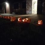 Welpen – Overnachting en Halloween