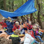 De bevers bouwen een hut in het bos!